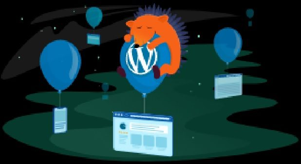Namecheap WordPress 18th Birthday Sale